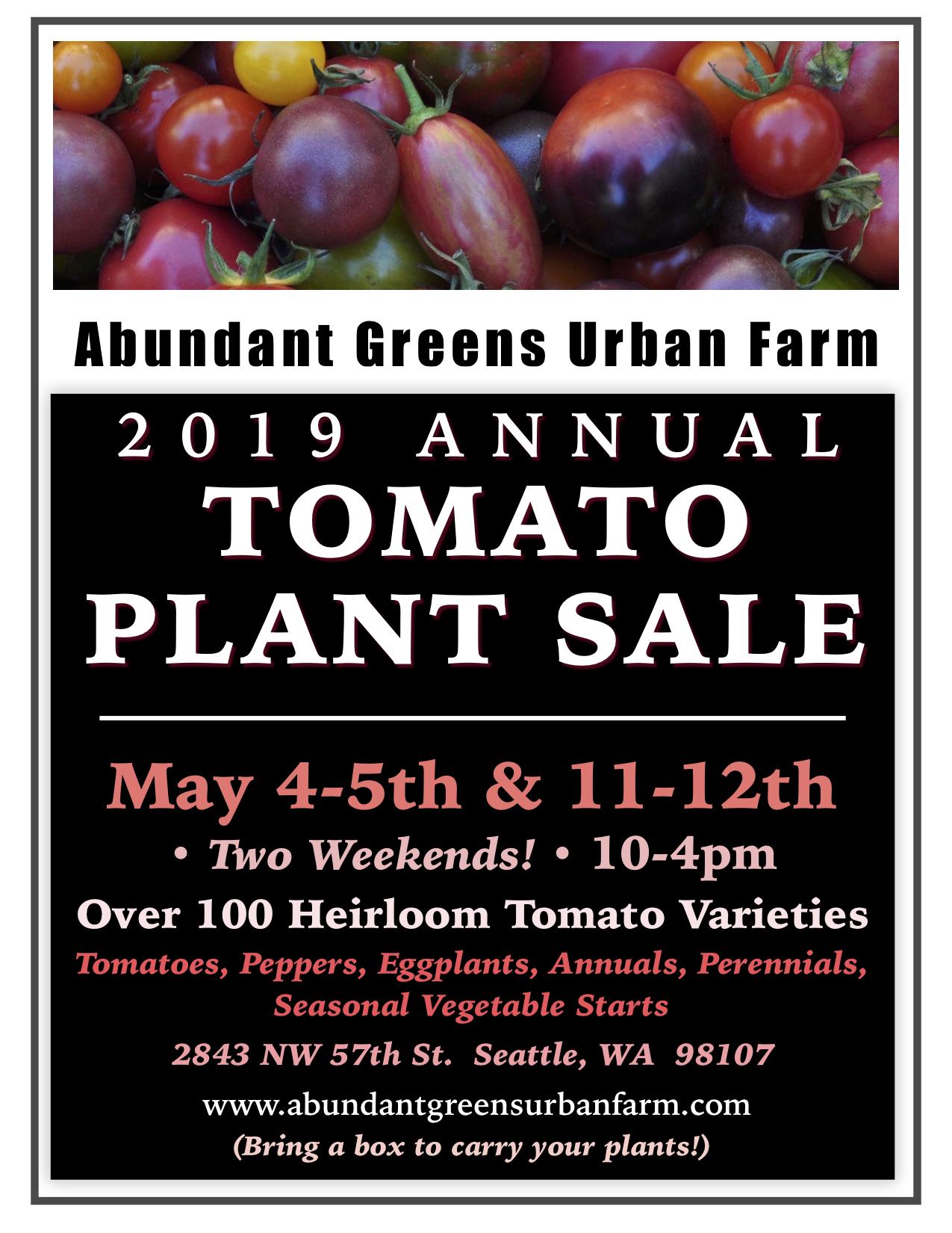 Abundant Greens Tomato Plant Sale