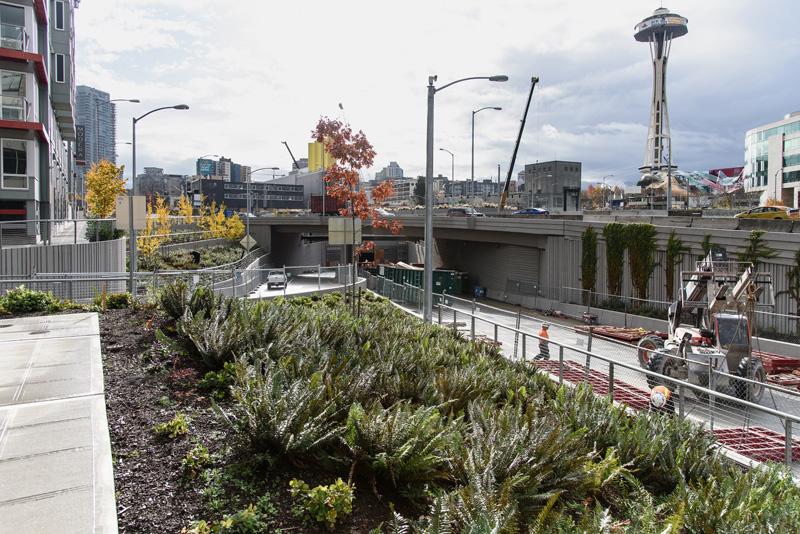 Restaurants Downtown Seattle Open Late