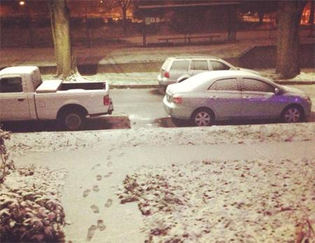 snow20131